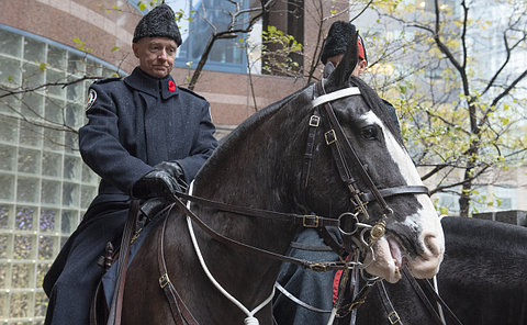 A man in uniform on a horse