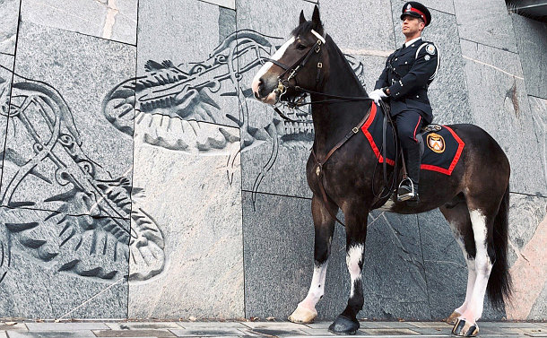 A man in TPS uniform on a horse near indigenous art carved into wall
