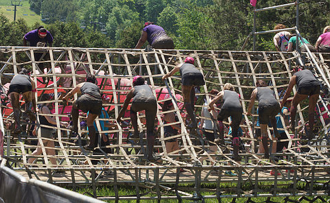 people on a rope obstacle