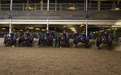 Six black horses with six uniformed officers on them