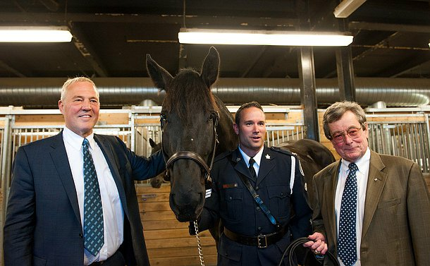 Three men and a horse smiling for a photo