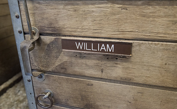 A nameplate William on a stable door