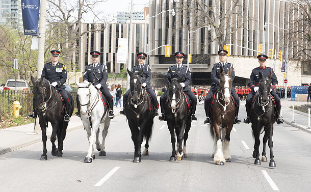 A group of men and women wearing police uniforms on horses