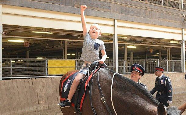 A boy on a horse