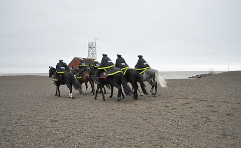 A group of men in TPS uniform on horseback on a beach near a white building
