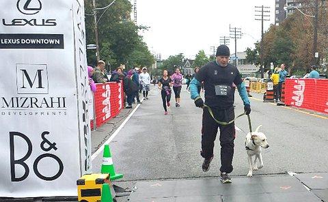 A man runs beside a dog on a leash on a street