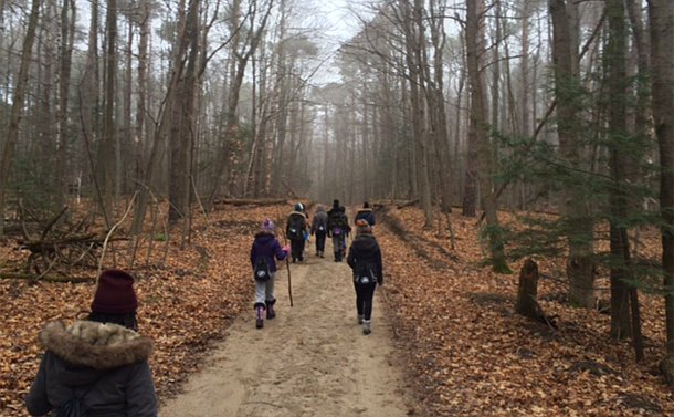 A group of people walks along a trail in a wooded area