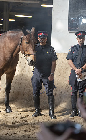 A man in TPS uniform holds a horse with smoke in foreground