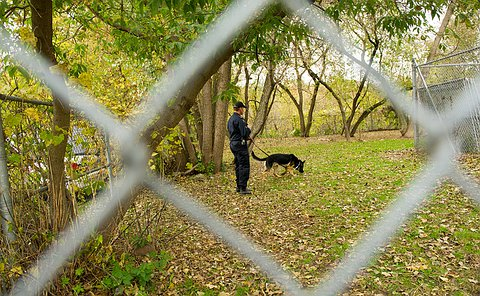 A man in uniform holding a dog by a leash, shot through a chain link fence.