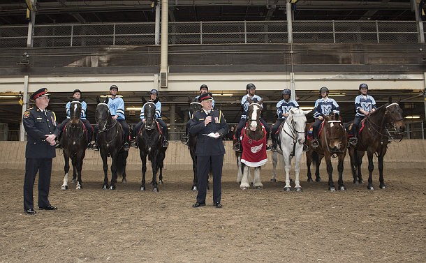 A man in police uniform in front of a row of horses