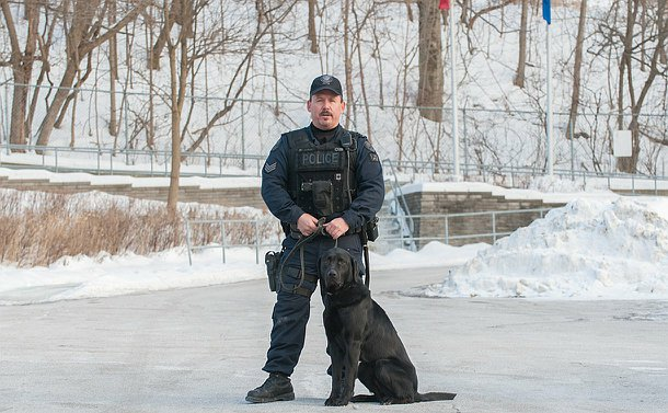 A man in  TPS uniform standing with a dog on a leash sitting