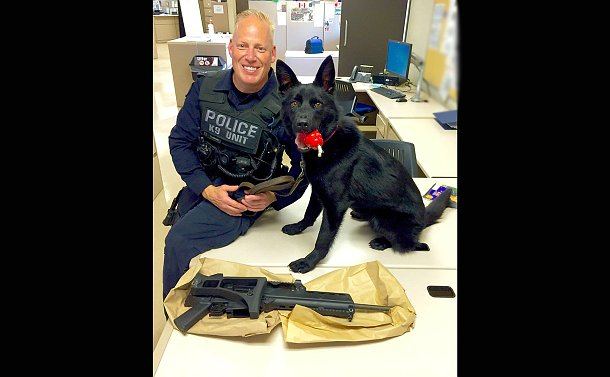 A man in TPS uniform with a dog on a desk with a large black gun