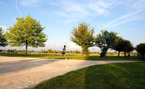 A wide angle shot of a boy running on a path in a a park, the path is curving towards the right. There are trees lining the path, he is between a gap in the trees, sprinting. Behind in the distance is a baseball diamond with people playing and a large white cloud above.
