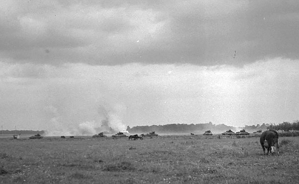 A group of tanks in  a field near a cow