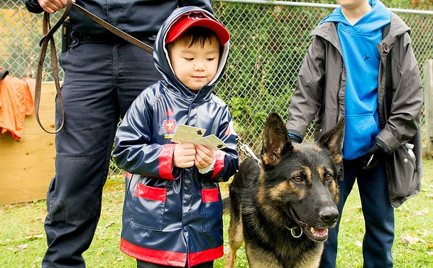 A young boy in a parka stands next to a dog.