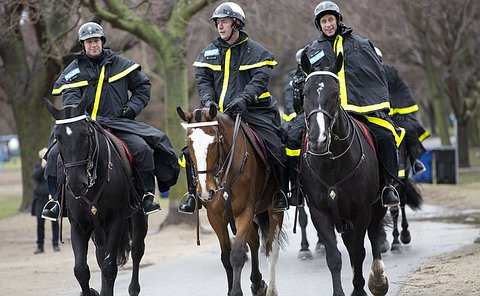 A group of police officers on horseback