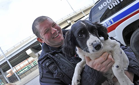 A man in TPS uniform holds a dog in his arms